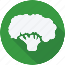 broccoli, cooking, food, fruit, fruits, gastronomy, vegetable icon