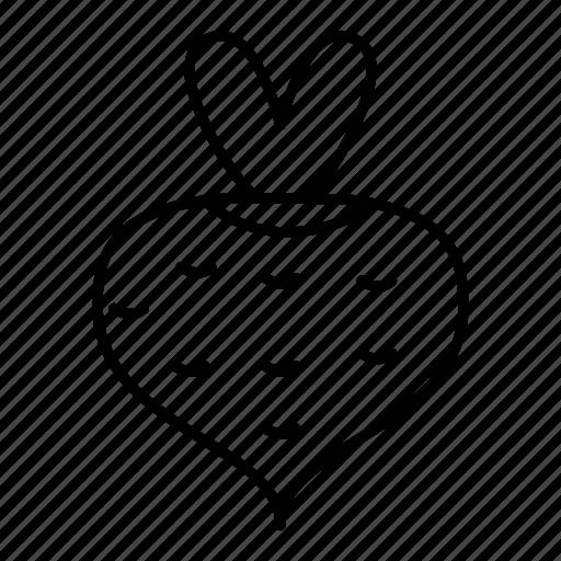 beetroot, food, plant, turnip icon