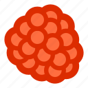 berries, berry, food, fruit, raspberry icon