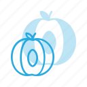 food, fruit, health, healthy, peach icon