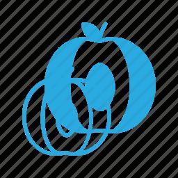 food, fruit, health, healthy, peach icon