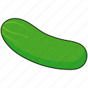 cucumber, pickle, salad, vegetable icon