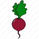 beet, root, vegetable icon
