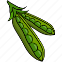 bean, colour, food, green, peas, string, vegetable icon