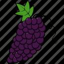 grapes, wine icon