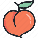 dessert, food, fruit, healthy, meal, peach icon