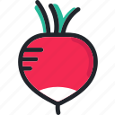 cooking, food, fruit, gastronomy, radish, vegetable icon