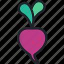 beet, food, fruit, gastronomy, healthy, vegetable