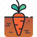 carrot, food, gastronomy, kitchen, vegetable icon