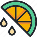 citrus, food, fruit, gastronomy, juice, lemon, vegetable icon