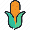 cereal, corn, food, gastronomy, healthy, vegetable icon