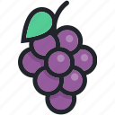 berry, dessert, food, fruit, gastronomy, grapes icon