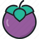 dessert, food, fruit, gastronomy, healthy, mangosteen icon