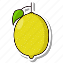 citrus, fruit, lemon icon