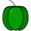 bellpepper, coloredbeans icon