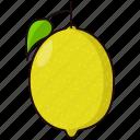 citrus, fruit, lemon