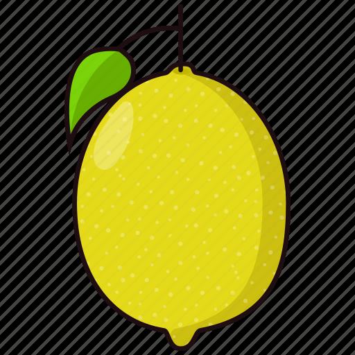 citrus, fruit, lemon icon