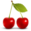 https://cdn1.iconfinder.com/data/icons/fruits/64/Cherry64.png