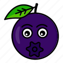 blueberry, character, food, fruit, organic