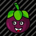 character, food, fruit, mangosteen, organic