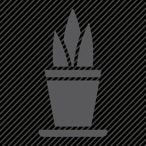 floral, flower, flowerpot, home, leaf, plant, pot icon