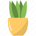 grass plant, houseplant, indoor plants, nature, potted plant icon