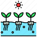 agriculture, farm, future, hydroponic, soilless icon