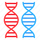 chromosome, dna, gene, genome, technology icon