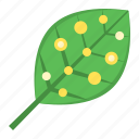 artificial, artificial leaf, leaf, technology icon