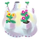 plant, flowers