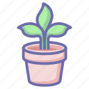 game, gaming, growth, plant