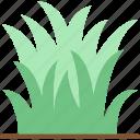 flower, garden, grass, plant, soil icon