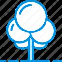 soil, plant, flower, tree, garden