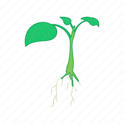 cartoon, green, growth, leaf, nature, plant, sprout icon