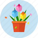 beauty, color, flower, flower pot, garden, leaves icon