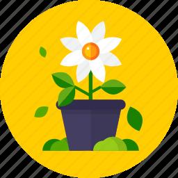 flower, flower pot, garden, leaves icon