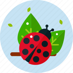 garden, ladybird, leaves, red icon
