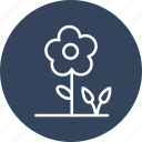 flower, plant, garden, gardening, greenery