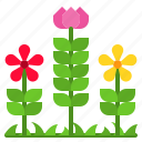 flower, flowerbed, garden, gardening, plant icon