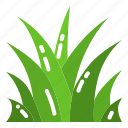 field, grass, lawn, meadow, plant icon