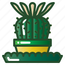 cactus, floral, flower, plant, succulent icon