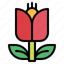 botanic, flower, gardening, plant icon
