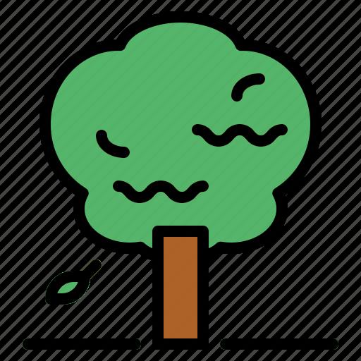 botanical, garden, nature, tree icon