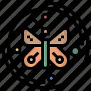 entomology, farming, garden, gardening, moths, wings