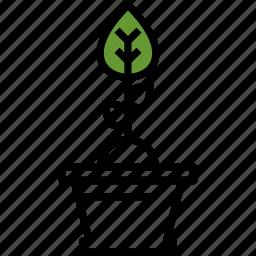 gardening, plant, pot icon