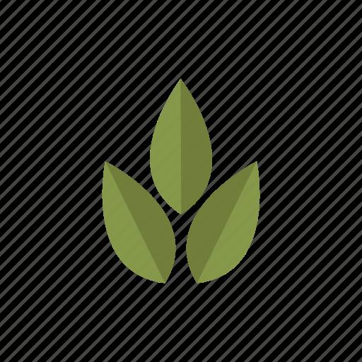 garden, gardening, leaves, nature, plant icon