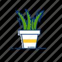 aloevera, botany, cactus, herb, herbal, natural, plant icon