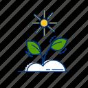 garden, grow, leaf, natural, organic, plant, seedling