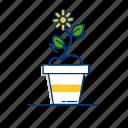 flora, flower, garden, nature, plant, spring, sunflower icon