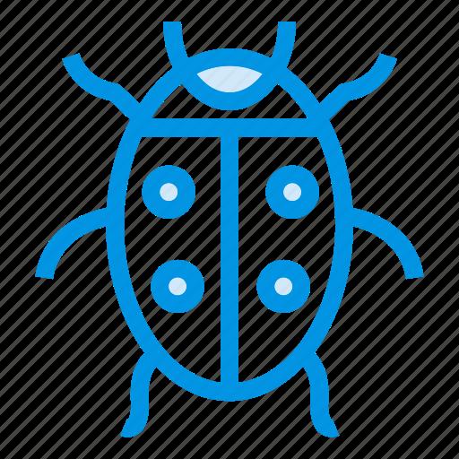 autumn, bug, fly, insect, ladybug, nature, virus icon